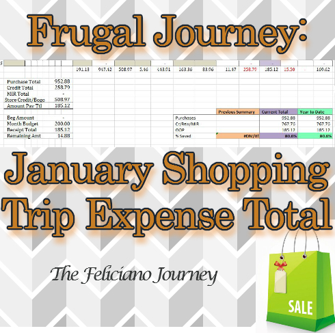 January Shopping Trip Totals