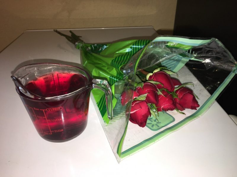 DIY – Rose Toner (optional Lemon/Lavender Oil)